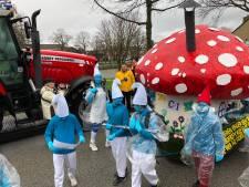 Carnaval in beeld (zondag)