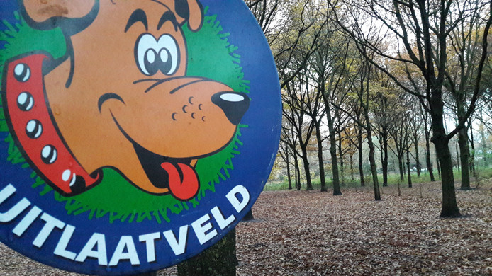 Schijndel telt meerdere uitlaatvelden voor honden, zoals deze aan de Hopstraat. Niet overal in Meierijstad is het zo goed geregeld voor honden en hun baasjes.