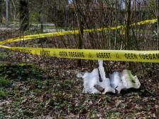 Schuurtjes met asbestdaken in Berkelland? 'Pak ze zo snel mogelijk aan'