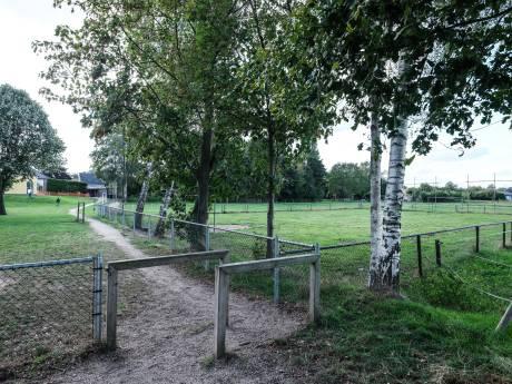 Op dit veldje mogen kinderen in Halle niet meer voetballen. Tot hun grote verdriet