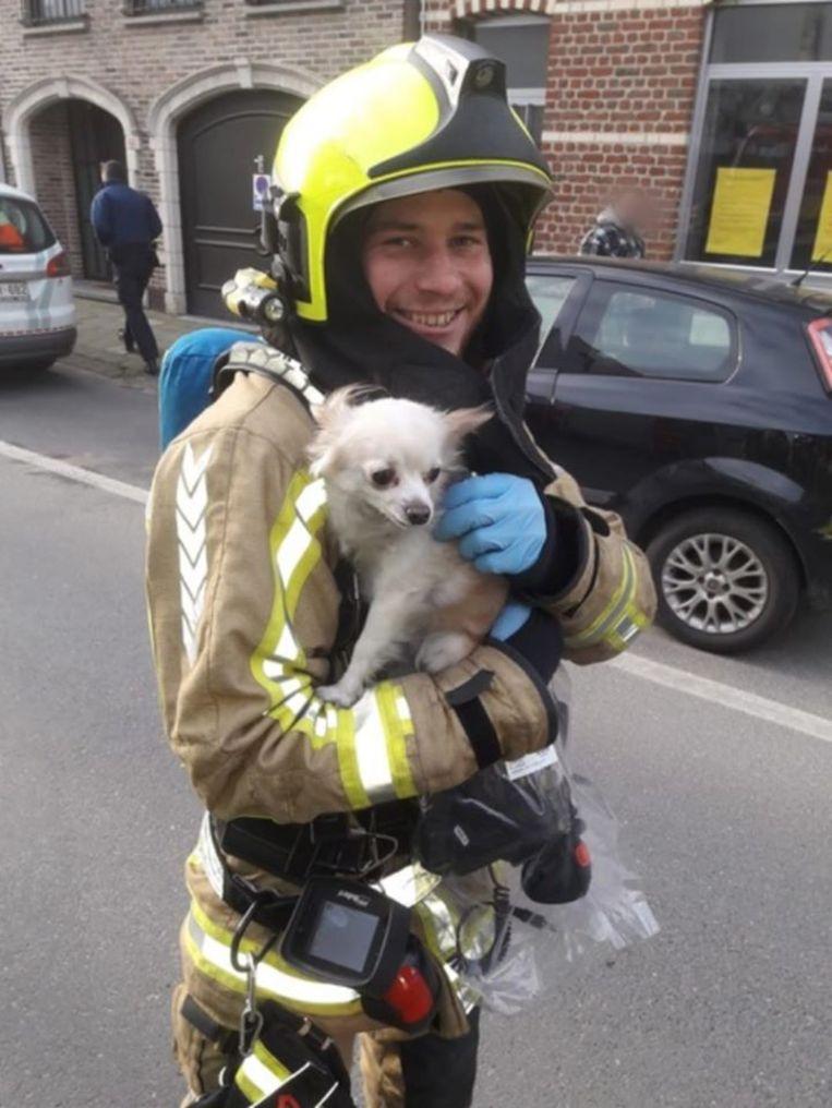 De brandweerman met het bange, maar ongedeerde hondje.