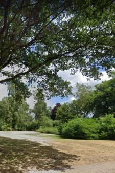 Wijk van de Toekomst met meer groen, zo wil Rijssen-Holten de hittestress in de zomermaanden aanpakken