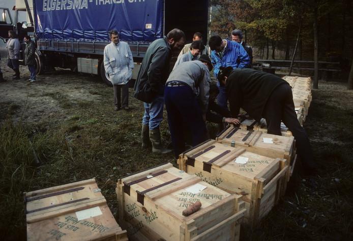 Voor de uitzetting in 1989 werden de bevers in houten kisten vervoerd, waarbij de binnenkant was voorzien van dun plaatstaal.