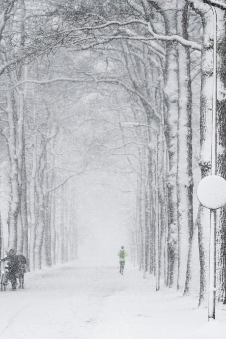 Deze week kans op eerste sneeuw in Oost-Nederland