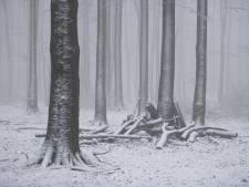 Sneeuw in heel Limburg dit weekend