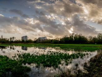Werken in Bleekmeersstraat: opgepompt grondwater krijgt nieuwe bestemming in Buylaers