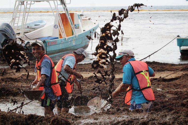 Arbeiders aan het werk op El Recodo Beach.