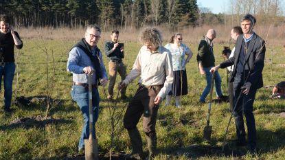 2.500 bomen aangeplant om meer te bewegen in het groen