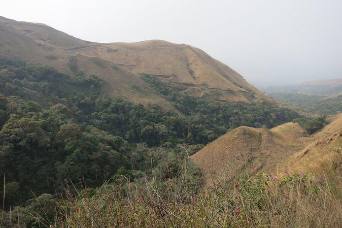 Het Nimba-gebergte in Guinee.