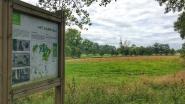 Nieuwe poelen, vleermuizenbunker en speelheuvels moeten meer bezoekers naar Kampveld lokken
