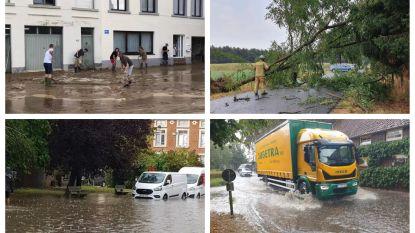 Tienen en Hoegaarden getroffen na fel onweer, enkele straten ondergelopen in Grembergen