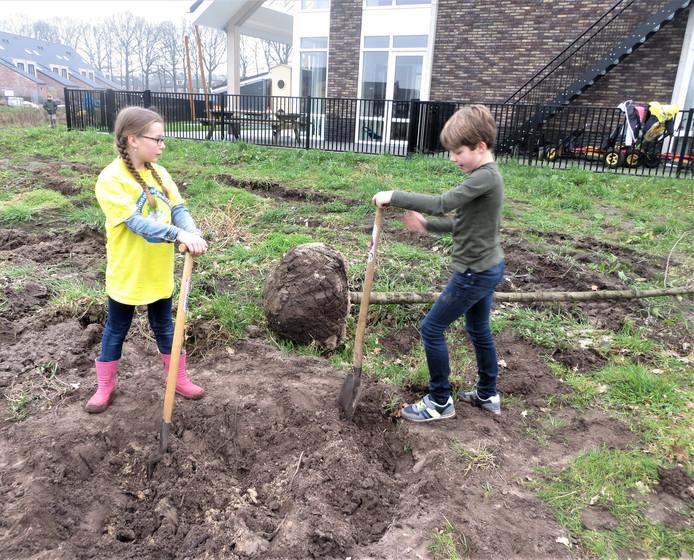 Een leerling van De Borgwal en de Stifthorst planten samen een boom.