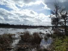 Waterschap Aa en Maas doet studie naar warmte winnen uit water, zodat aardgas straks tot het verleden behoort