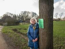 Els van Ginkel wil niet dat natuur bij Husselsesteeg wijkt voor woningen: 'Veel Puttenaren halen hier een frisse neus'