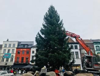 Opnieuw kerstboom op de Grote Markt vanaf 28 november