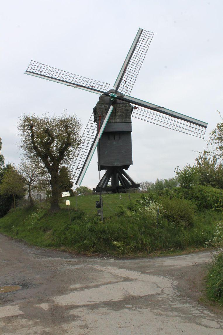 De in Vlaanderen wereldberoemde molen.
