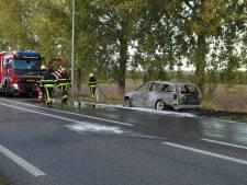 Auto uitgebrand op N267 bij Wijk en Aalburg