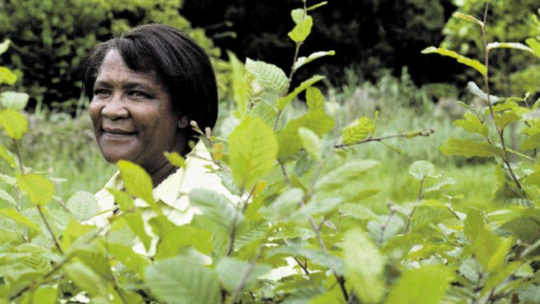Marie Malan is manager van de eerste wijngaard die fair trade én biologisch is. (MAARTJE GEELS) Beeld