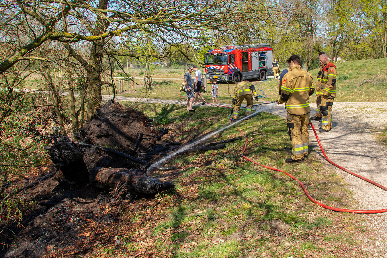 Boomstronk in brand in natuurgebied Oss