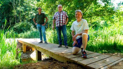 Houten brug van 7 meter maakt het Hessepoelbos toegankelijk voor wandelaars en recreatie