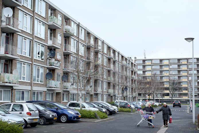 De Schiedamse wijk Groenoord wordt gekenmerkt door een enorme diversiteit aan bewoners, maar ook veel flats.