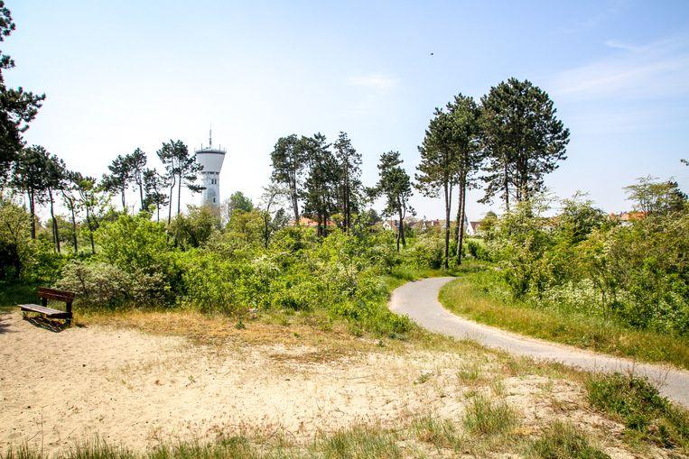 Park 58 werd gedeeltelijk ontbost om terug duinen te maken