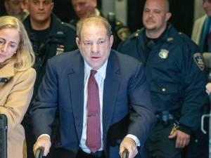 Harvey Weinstein chassé de chez celle qu'il voulait agresser par un chihuahua