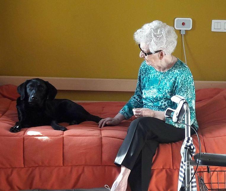 De hond Puma heeft een therapeutisch effect op de ouderen.