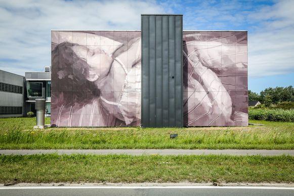 Een werk van Elisa Capdevila in Wetenschapspark 1.