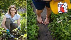 Een blotevoetenpad in je tuin? Laurence Machiels legt uit hoe je er zelf eentje maakt