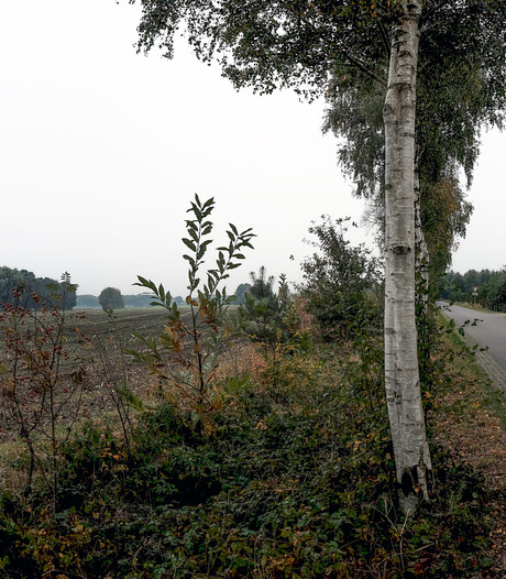 Actieplan voor 'niet-gehoorde' bewoners van Bronckhorst in buitengebied
