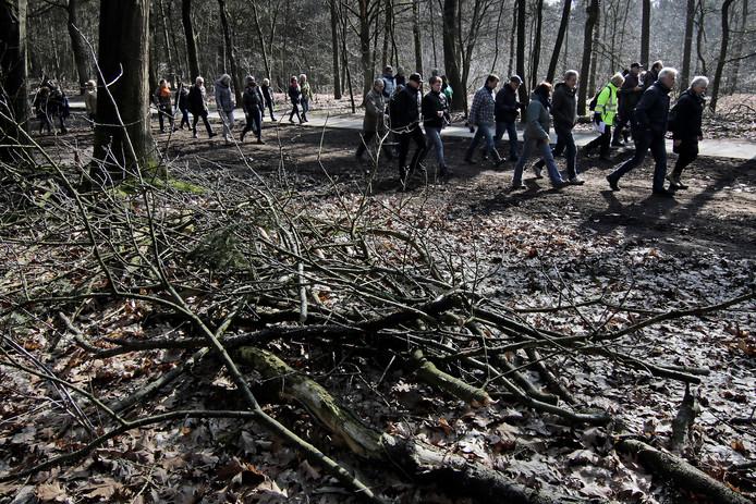 Een excursie in Herperduin, het 0sse deelgebied van de Maashorst.