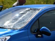 Paard gewond bij aanrijding met personenauto