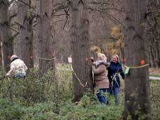 Grote bomenkap voor vitaal Mallebos begint: Nieuwe bomen worden in de winter geplant