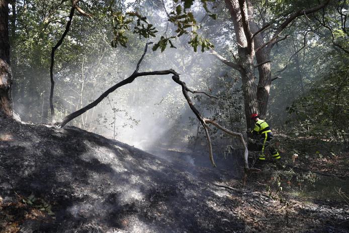 De brand legde 'slechts' twintig bij twintig meter in de as.
