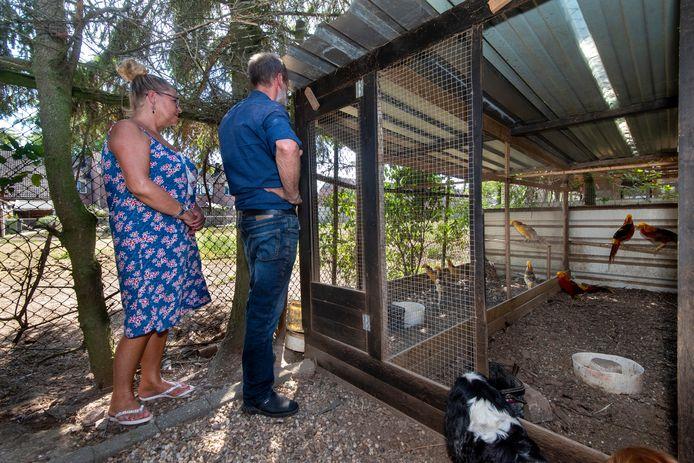 Eigenaar Arie Andeweg vreest dat zijn nieuwe buren gaan klagen over de dieren.