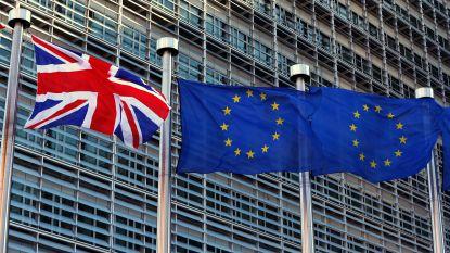 Europees parlement bezorgd over rechten EU-burgers na brexit