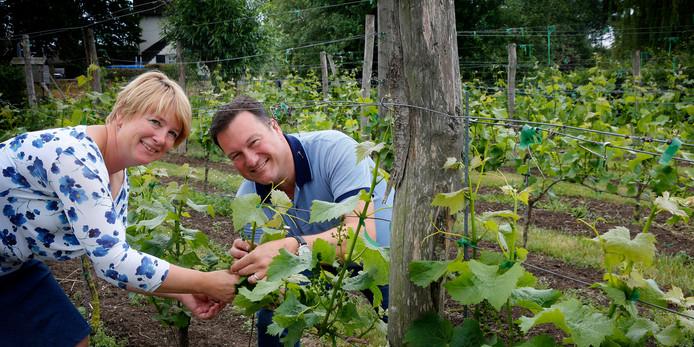 Cynthia en Feddo Heintz in hun wijngaard.