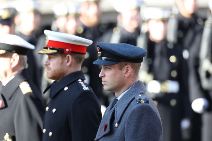 Le prince Harry et le prince William, le 10 novembre 2019.