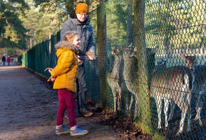 Bezoekers bij het hertenkamp aan de Dellenweg in Epe.