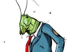 FIOD probeert greep te krijgen op miljoenenfraude 'Sprinkhanen'