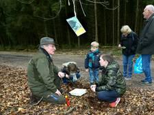 Kinderen leren spelenderwijs over het bos bij Ede