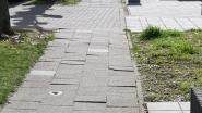 Voetpaden in Molenbergwijk in slechte staat