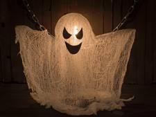 Op de griezelfoto met Halloween in Renesse
