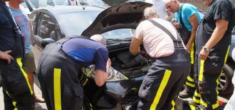 Brandweer bevrijdt kitten uit motorblok van auto in Sprang-Capelle