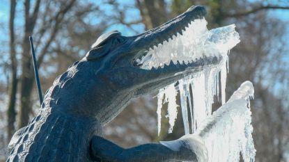 Fonteinen worden ijssculpturen