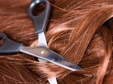 Brabantse lustknipper knipt stuk haar af van vrouw in trein