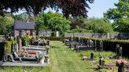 Commotie rond 'vergroening' van begraafplaatsen: moeten inwoners geduld hebben?