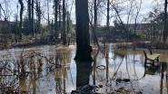 Park van Heule tijdelijk afgesloten door hevige regenval