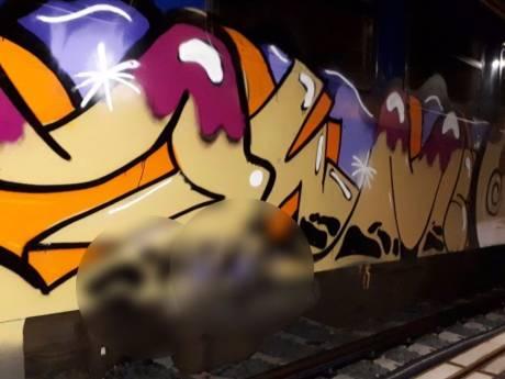 Politie pakt graffitispuiter op in Zwolle: man beschilderde al jaren treinen en gebouwen